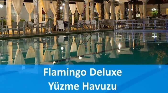 Kayseri Flamingo Deluxe Yüzme Havuzu